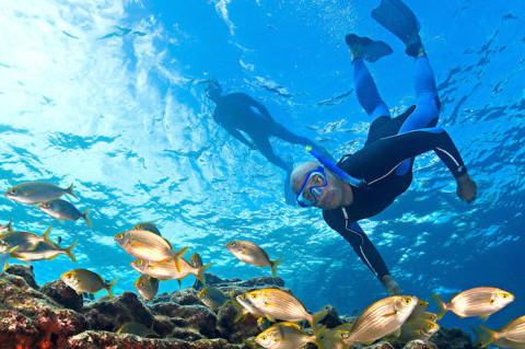 Snorkeling-e-piccola-apnea-in-Mediterraneo